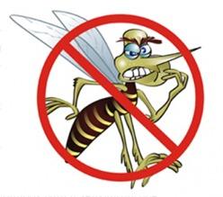 contra_dengue_211